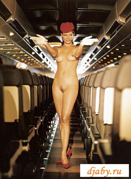 Эротическое путешествие с отважными сексапильными стюардессами