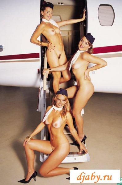 Раздетые искрометные стюардессы как на-подбор