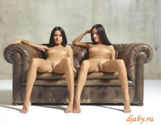 Эротика близнецов с желанными прелестями (30 фото)